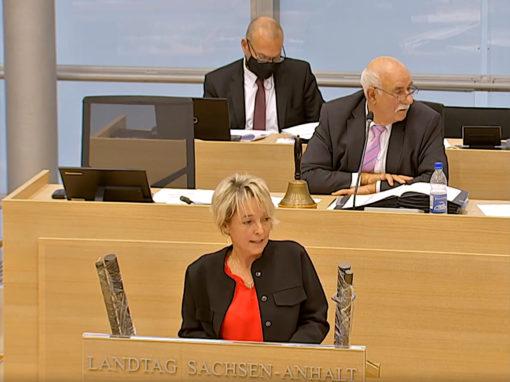 Petitionen 2019: Tätigkeitsbericht im Landtag